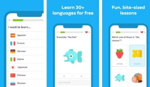The Best Android Apps to Learn Foreign Languages in 2021